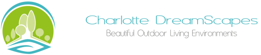 Charlotte DreamScapes